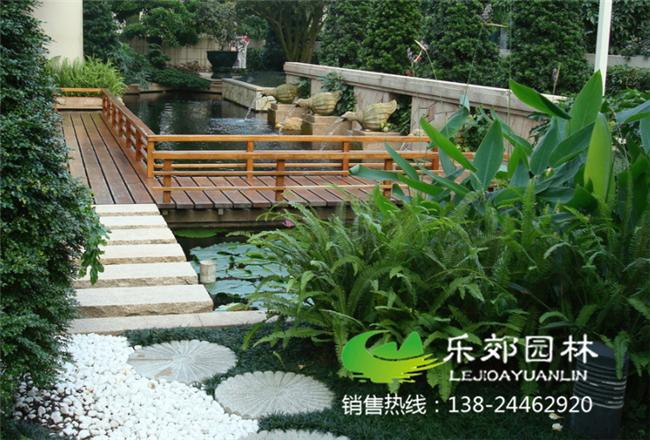 庭院荷花小鱼池设计图